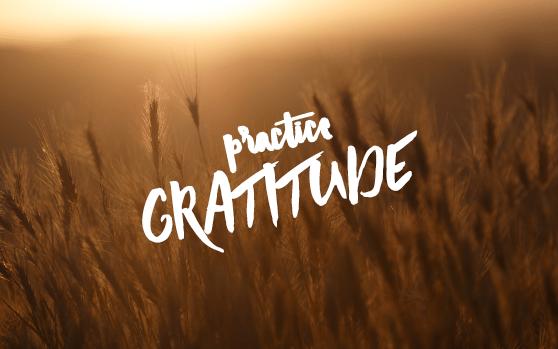 Blog-Body.Gratitude